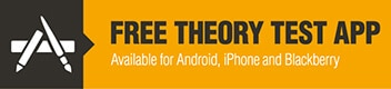 Free Theory Test App Button